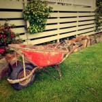 Jak przygotować ogród?